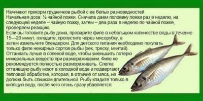 В каком возрасте ребенку можно давать рыбу