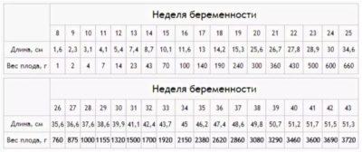 Сколько весит ребенок в 30 31 неделю