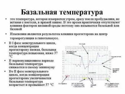Как правильно измерять базальную температуру