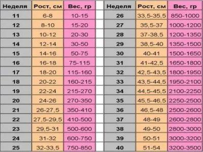 Сколько весит ребенок в 27 недель