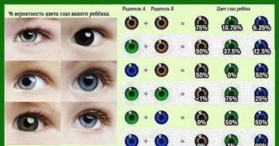 В каком возрасте дети видят цвета