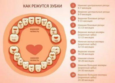 Когда появляются зубы у грудничков