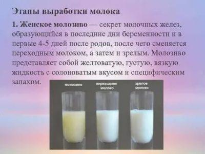 Когда появляется молоко до родов