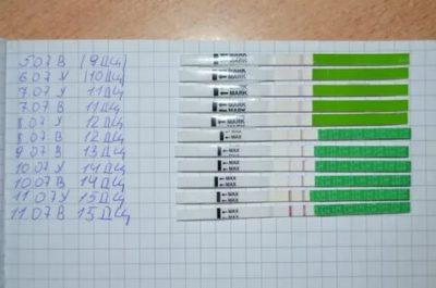Как правильно пользоваться тестом на овуляцию