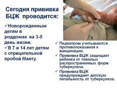 Когда можно делать прививку от туберкулеза