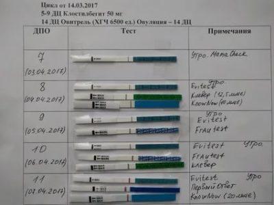 Можно ли делать тест на беременность через неделю после овуляции