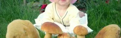 Когда можно вводить грибы ребенку