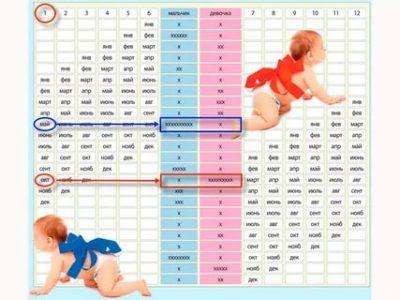 Можно ли при помощи эко определить пол ребенка
