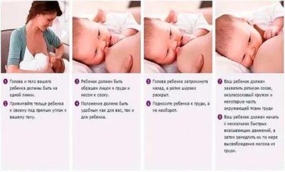 Как правильно кормить малыша грудью