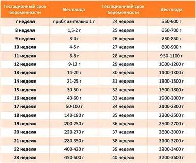 Сколько должен весить ребенок в 30 недель беременности
